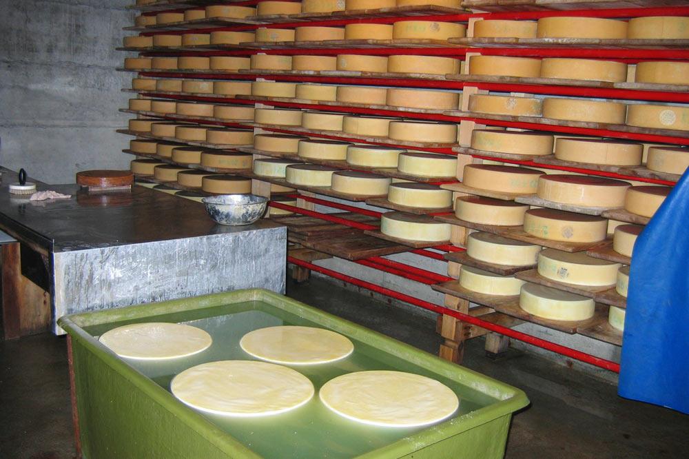 Cave à fromage du chalet Mittlist Morgeten