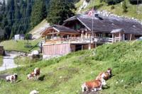 Le chalet Rizli Alp