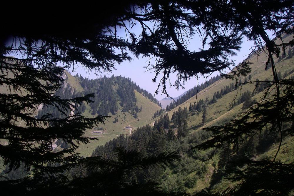Sur la route du chalet d'alpage du Col de Chaude