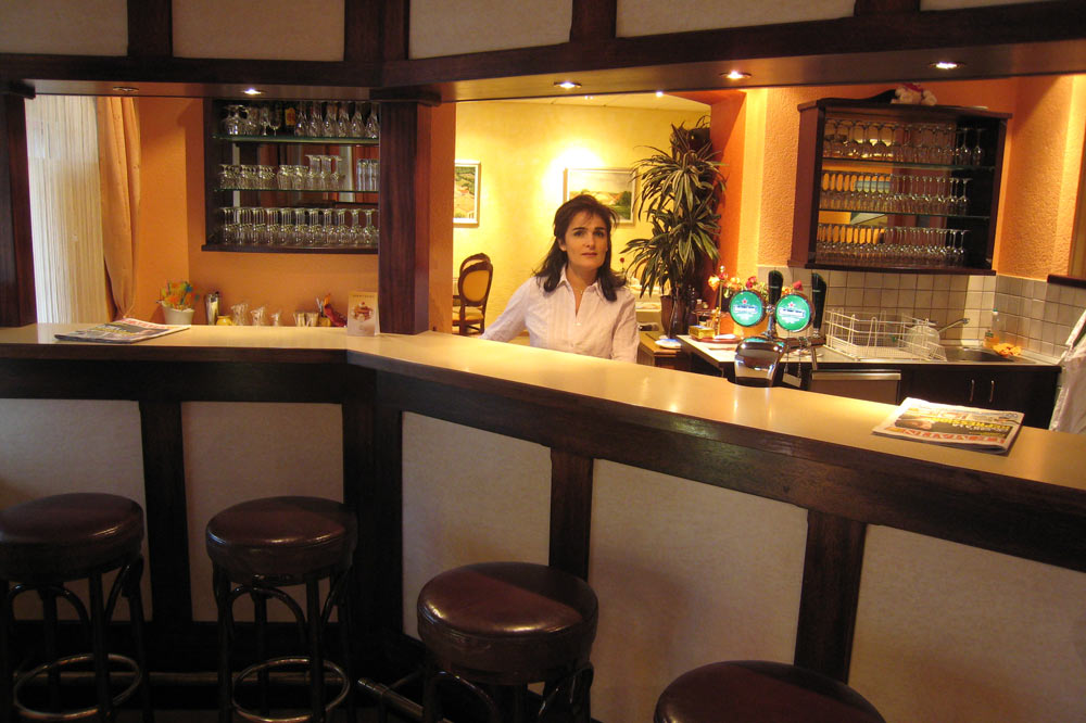 Le bar de l'hôtel restaurant Le Nord