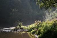 Zone alluviale d'Autigny