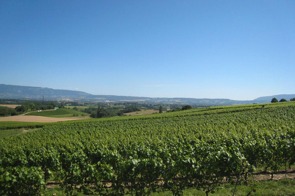 Genève agricole