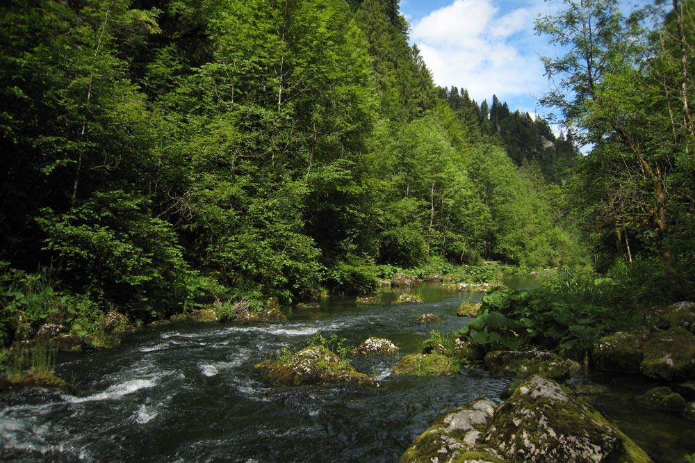 Rapide sur le Doubs