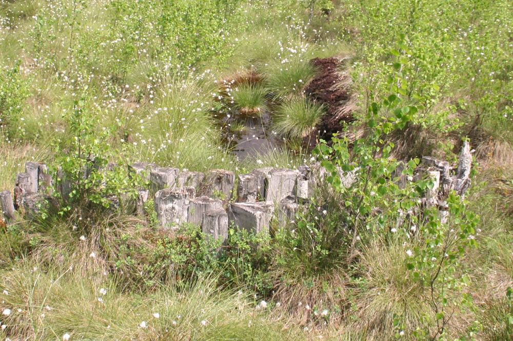 Barrage sur un canal de drainage