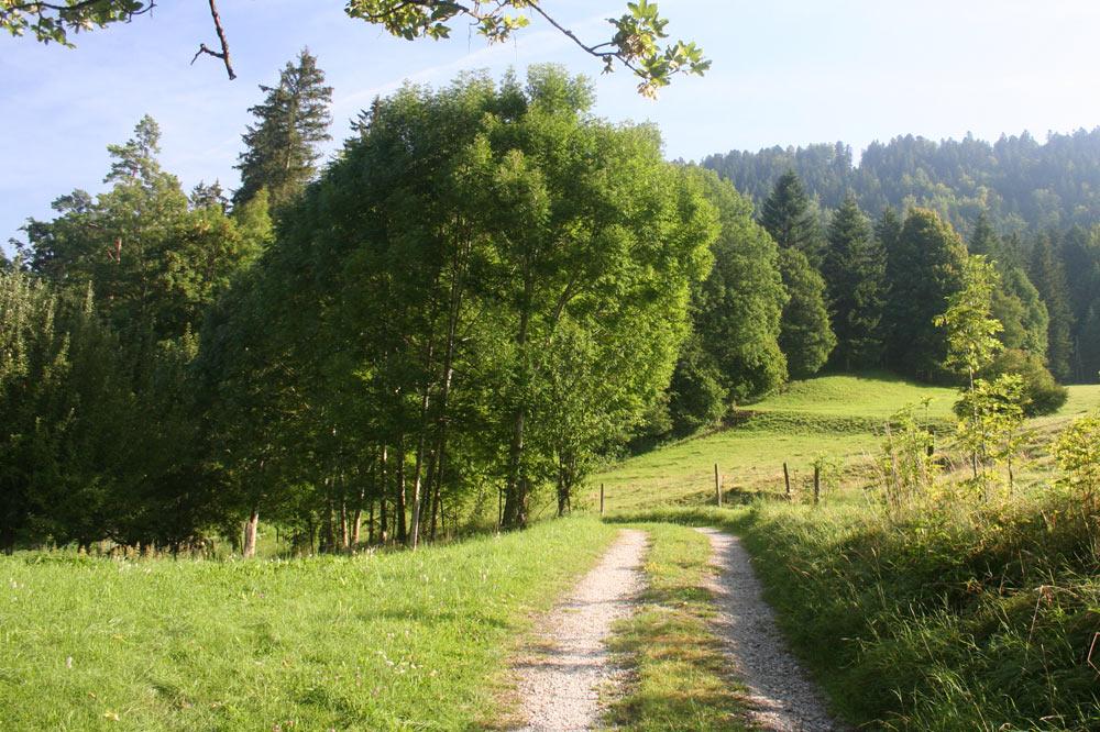 Sentier champêtre
