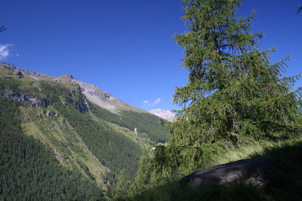 Panorama sur le Val d'Hérens depuis les hauts d'Evolène