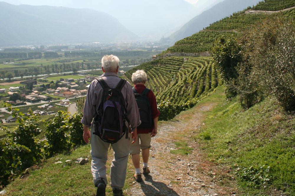 Promeneurs sur le sentier des vignes et guérites