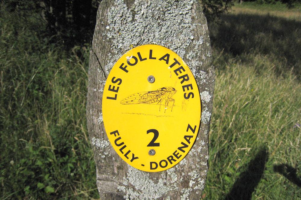 Panneaux du sentier nature