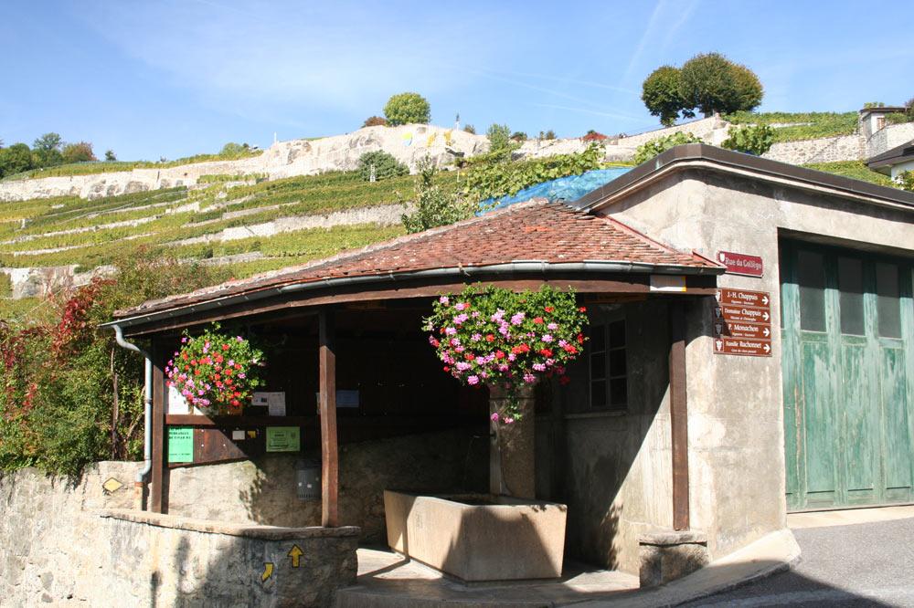 Fontaine couverte - Rivaz