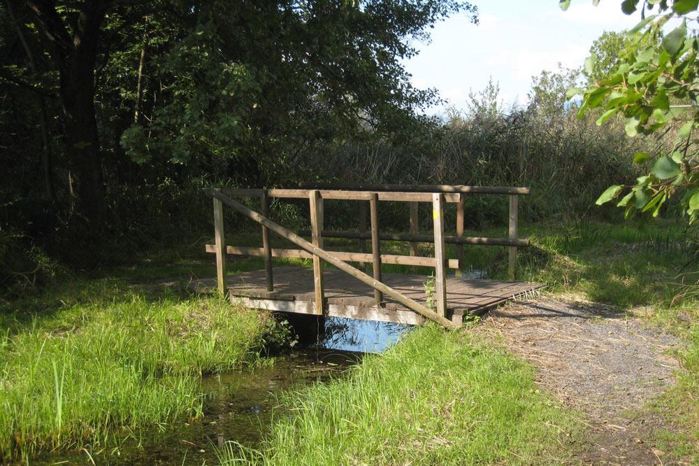 Petit pont sur un ancien canal de drainage