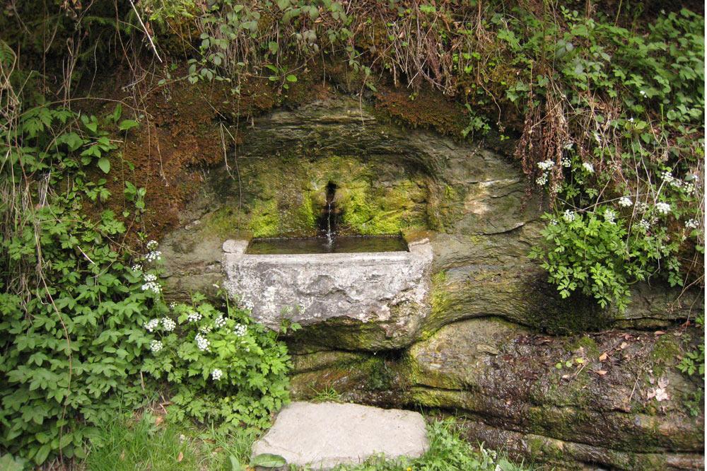 Fontaine dans les bois du Jorat