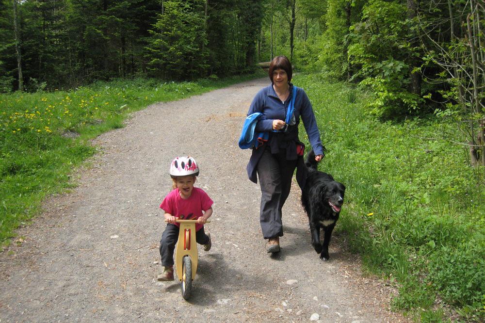 Promenade dans les bois du Jorat