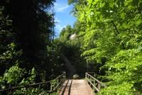 Pont sur le Flon