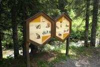 Panneau didactique du sentier des abeilles