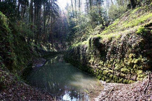 Vestiges du canal d'Entreroches